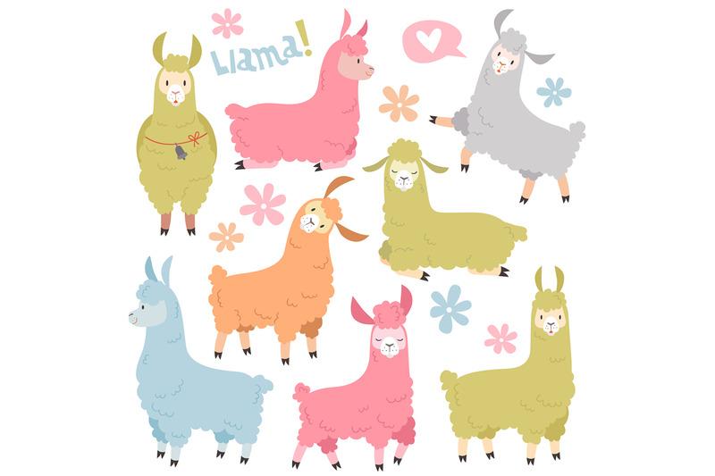 cute-llama-set-baby-llamas-alpaca-wild-lama-peru-camel-girl-invitat
