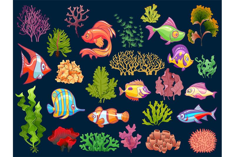 cute-kid-underwater-set-aquarium-baby-fish-and-seaweed-in-water-for-c