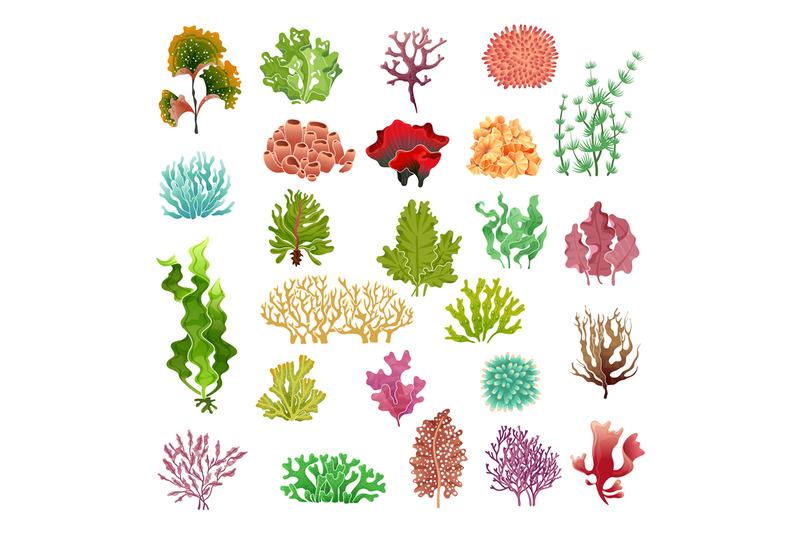 coral-and-seaweed-underwater-flora-sea-water-seaweeds-aquarium-game