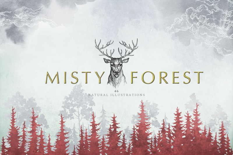 misty-forest-collection