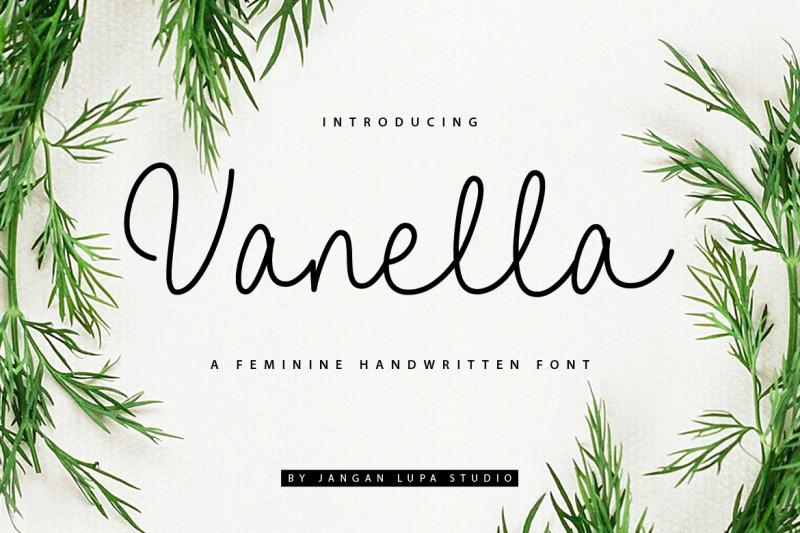 vanella-feminine-script-font