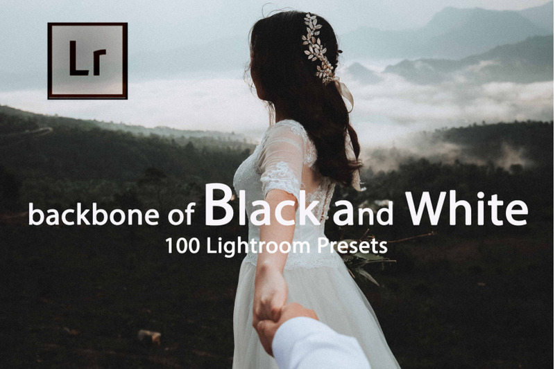 backbone-of-black-and-white-lightroom-presets