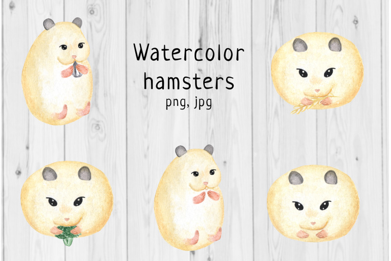 watercolor-hamster-1