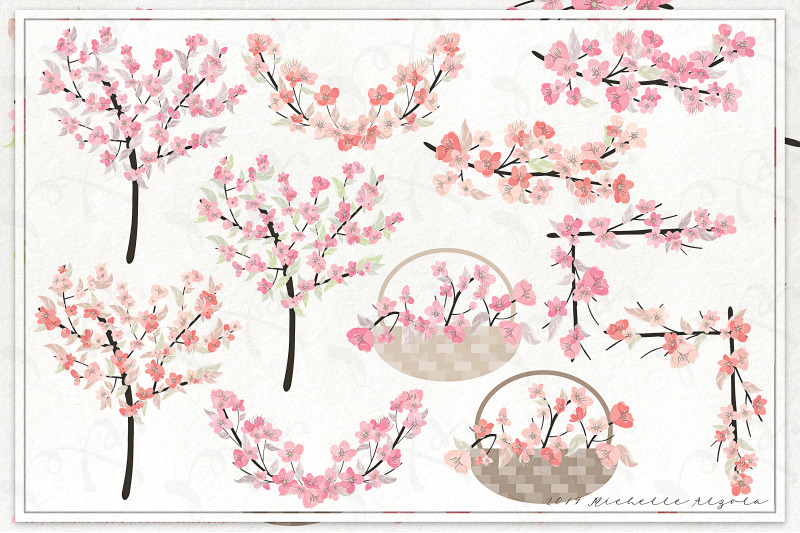 cherry-blossoms-04-floral-graphics-pack