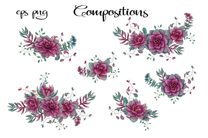cacti-amp-succulents-in-purple