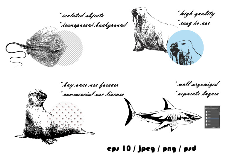 ocean-inhabitants-set-hand-drawn-illustration-collection