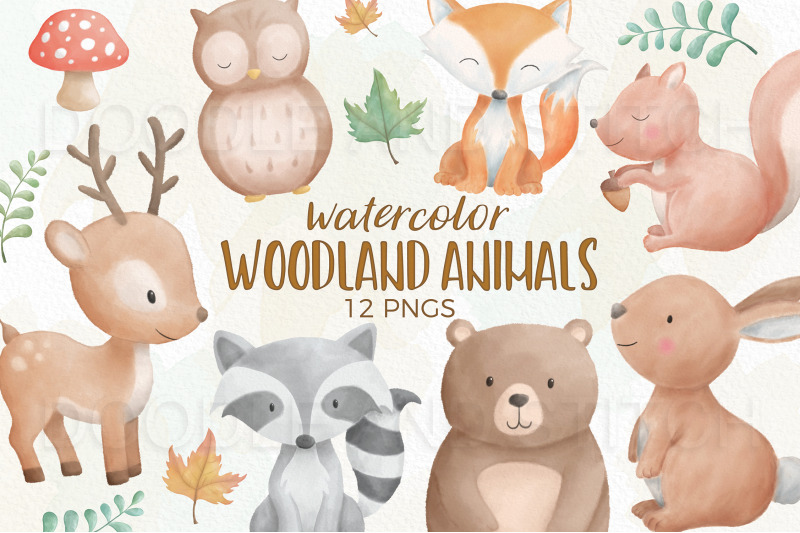 woodland-animal-watercolor-illustrations
