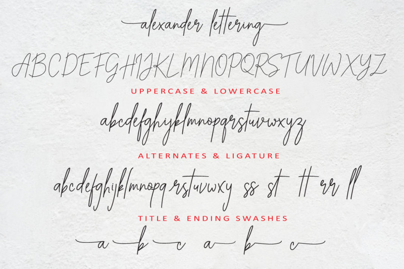 alexander-lettering-stay-classic