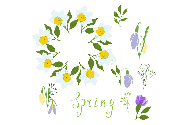 daffodils-snowdrops-stylized-herbs-isolated-on-white-flower-spring-t