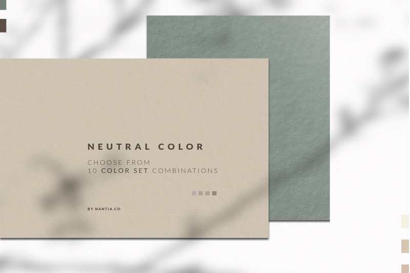 Neutral Color Palette Collection By Nantia Thehungryjpeg Com