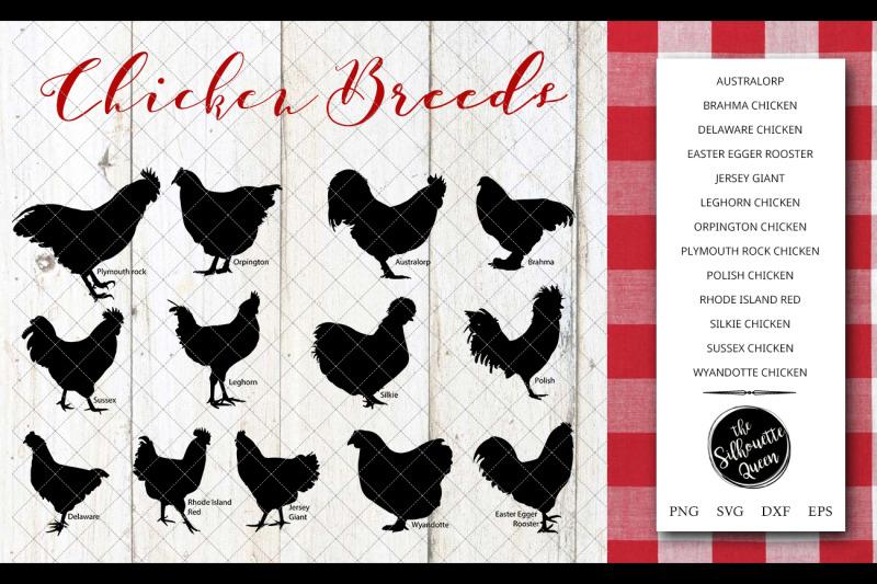 chicken-breeds-silhouette-vector-svg-file-chicken-svg-cut-file-silho