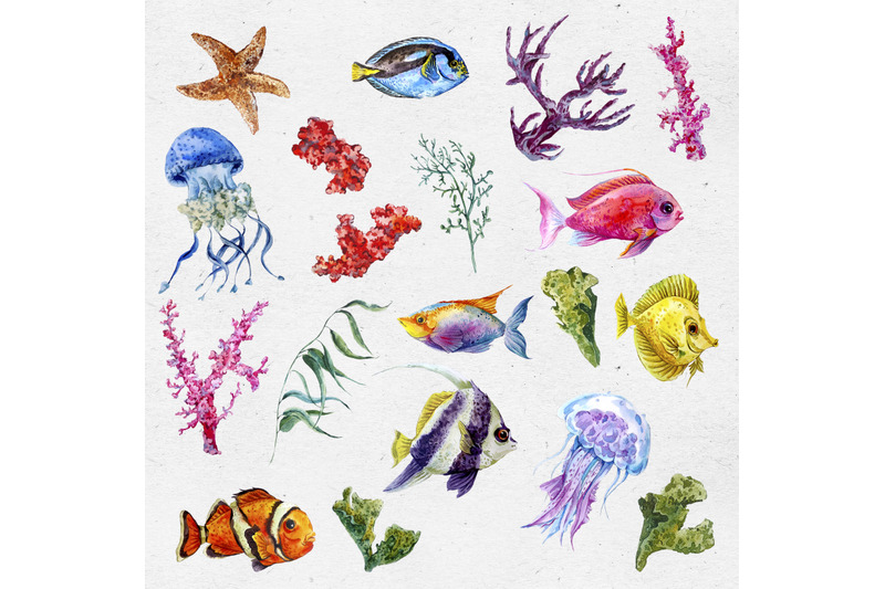 watercolor-sea-life-clipart