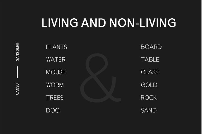 cansu-sans-serif-font-family