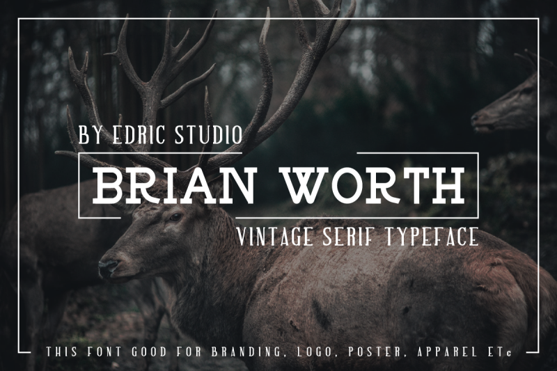 brian-worth