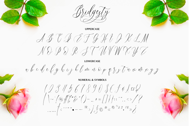 bridgesty-wedding-font