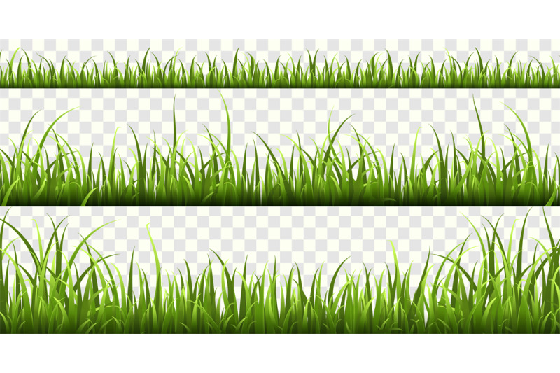 green-grass-borders-summer-meadow-green-panorama-nature-herbs-spring