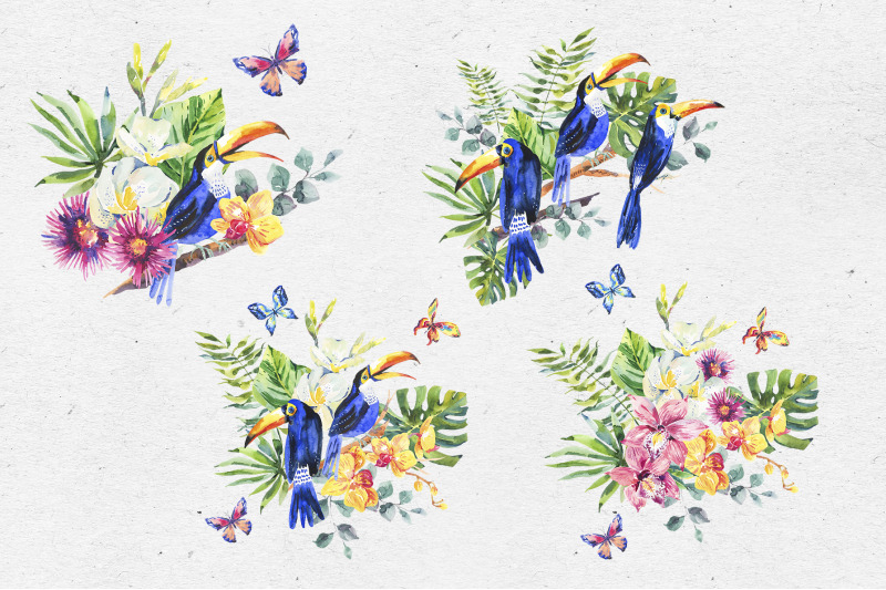 watercolor-toucan-and-orchid-flowers