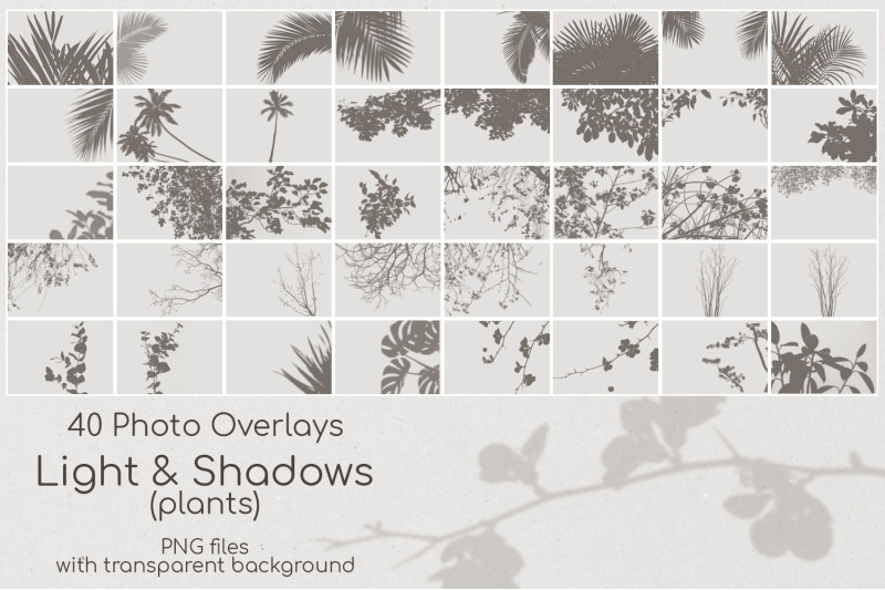 40-plant-shadows-overlays