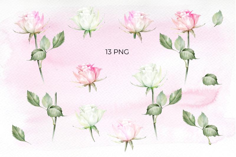 tender-roses-watercolor-set