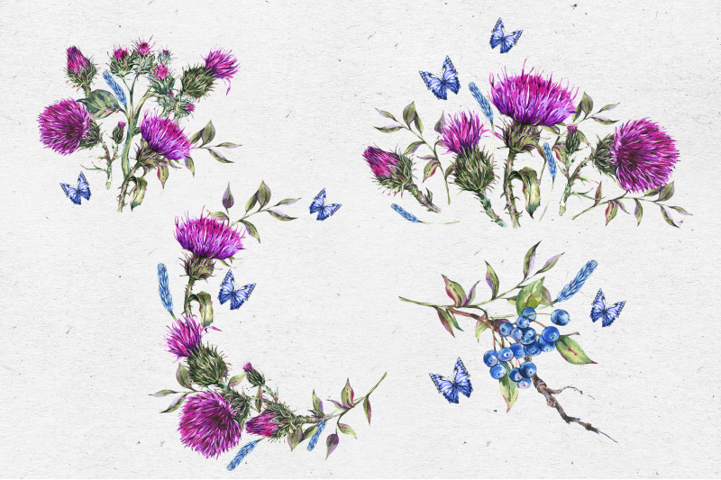 watercolor-thistle-frame-and-cards