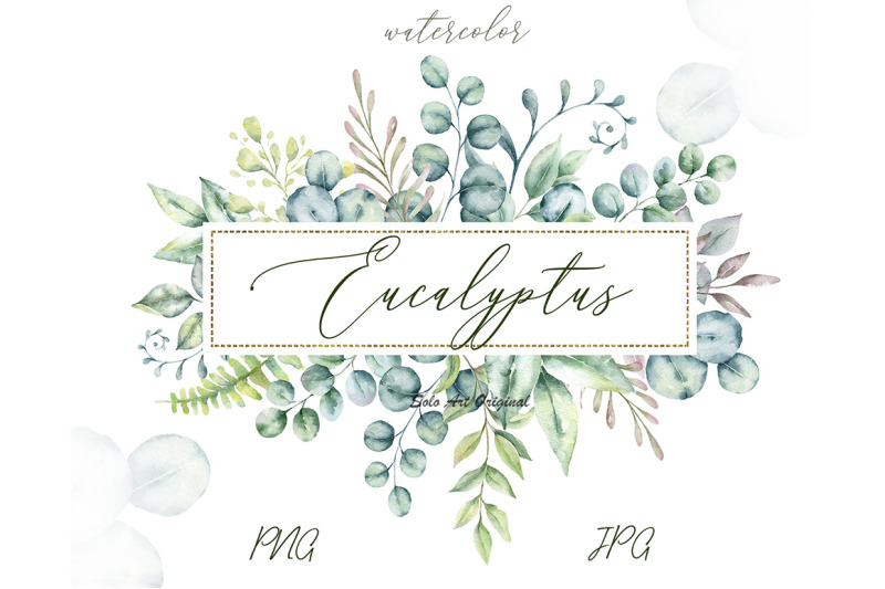 eucalyptus-green-leaves-watercolor-collection