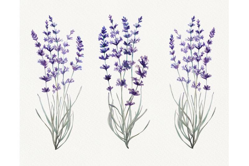 watercolor-provence-souvenirs
