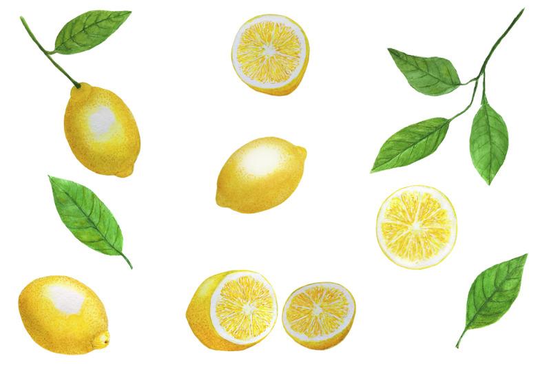 lemons-watercolor-set