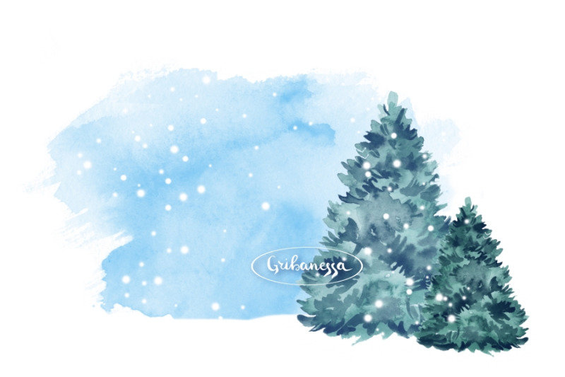 fir-tree-watercolor-illustration
