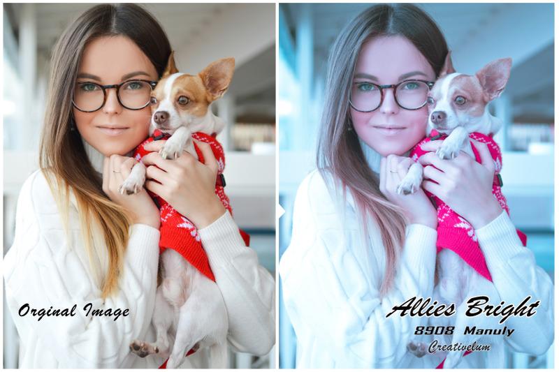 allies-bright-instagram-blogger-lightroom-presets