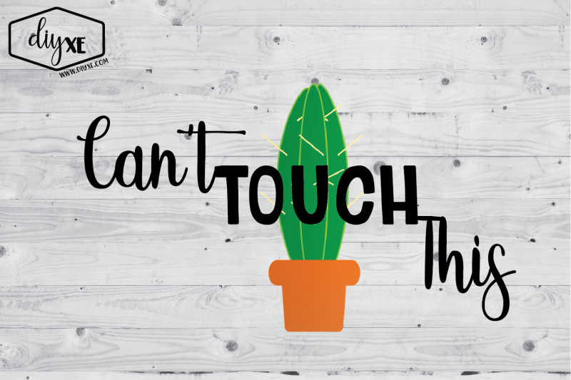can-039-t-touch-this