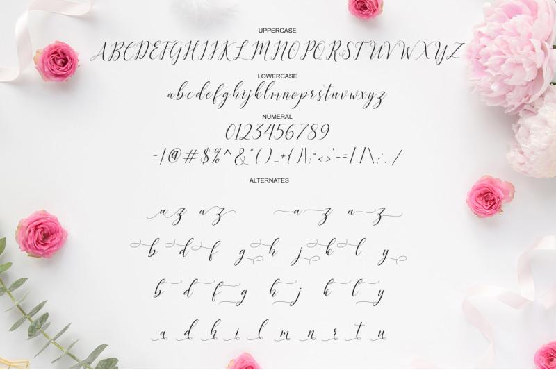 katrina-script