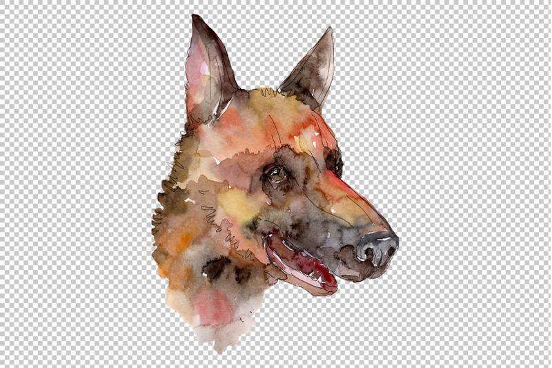 farm-animals-dog-head-watercolor-png