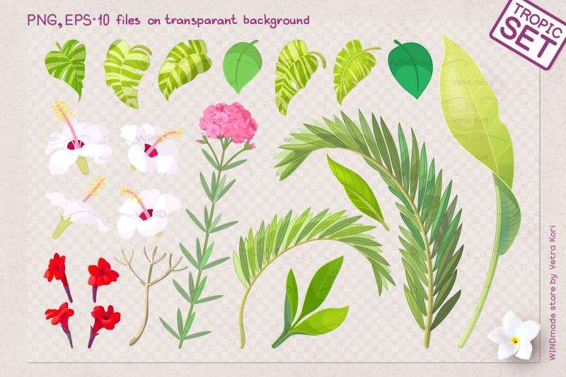 vector-tropical-plants-set
