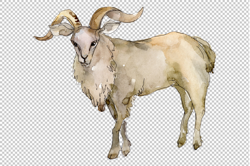 agriculture-goat-watercolor-png