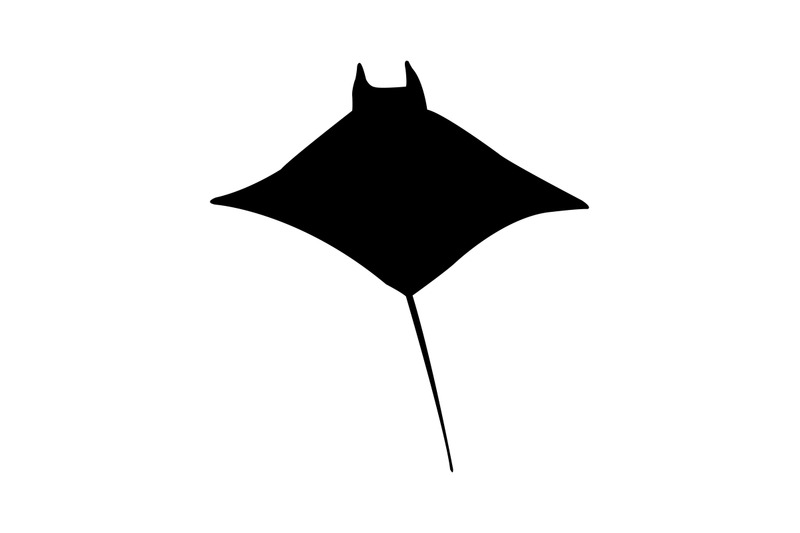 manta-fish-icon