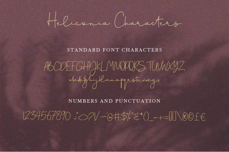 heliconia-script