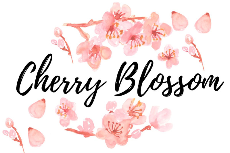 watercolor-floral-cherry-blossom-clipart