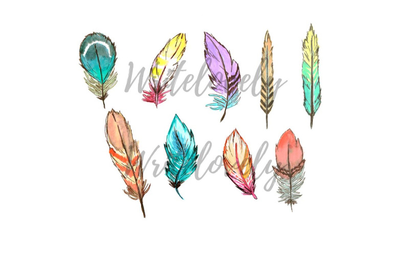 watercolor-boho-feather-clipart