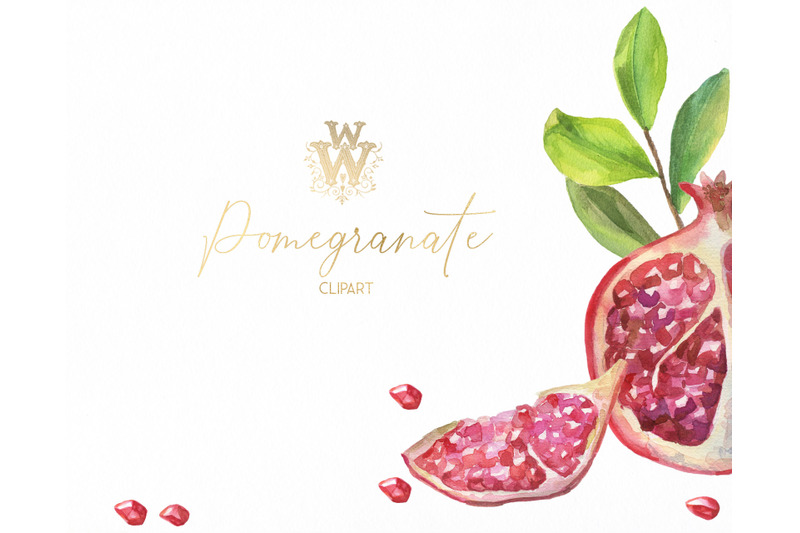 pomegranate-red-floral-clip-art-watercolor