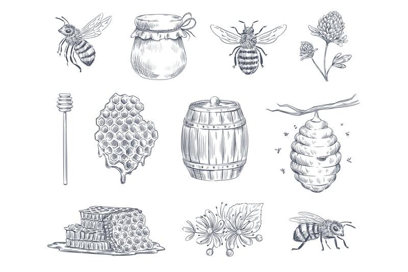 bee-engraving-honey-bees-beekeeping-farm-and-honeyed-honeycomb-vinta