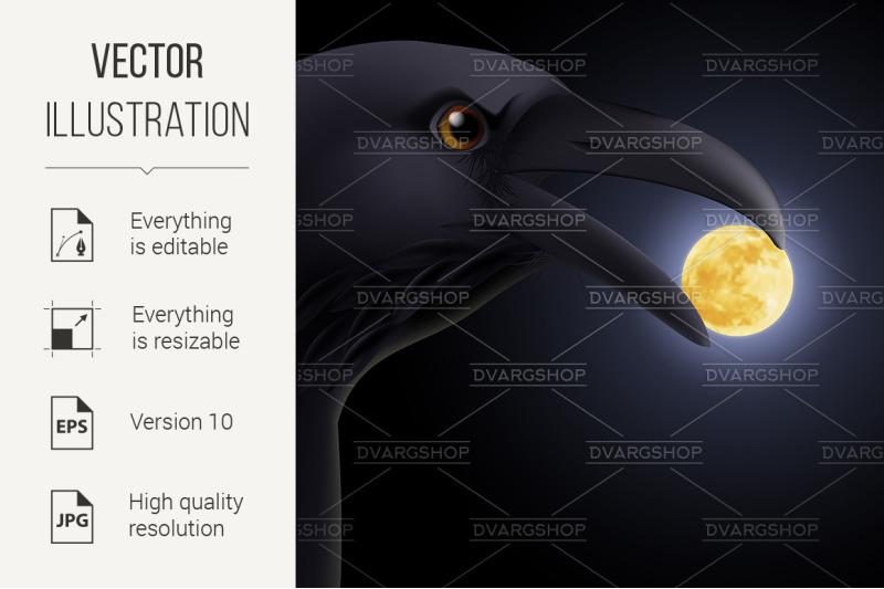 black-raven