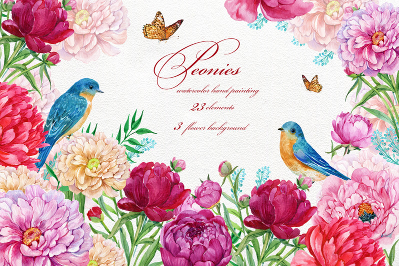 peonies-flowers-watercolor-wedding-clipart-hand-painted