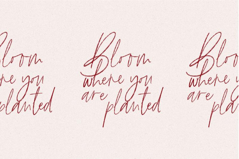 the-brywood-signature-amp-serif-font-duo