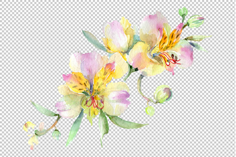 bouquet-with-orchids-angel-gift-watercolor-png