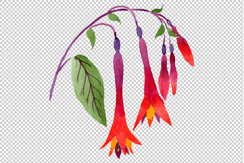 orange-red-fuchsia-watercolor-png