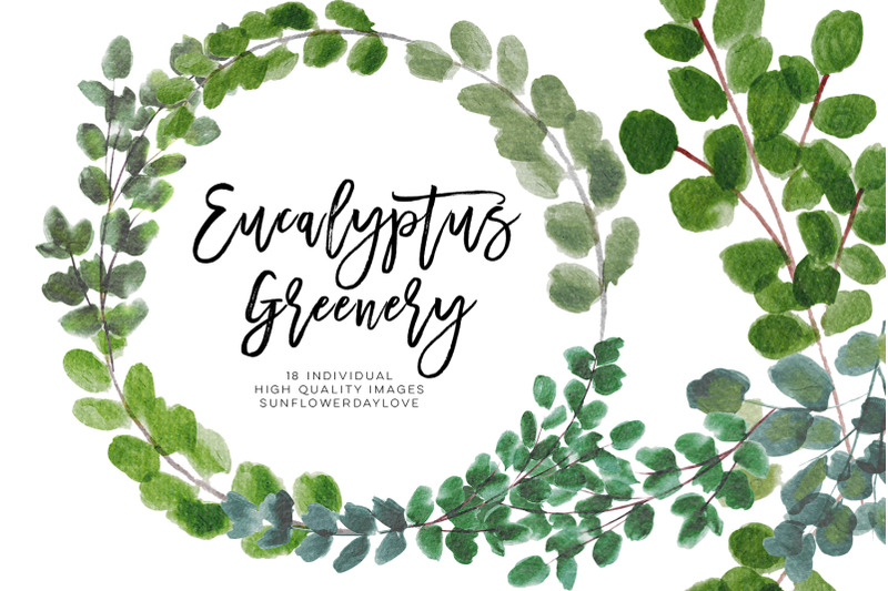 greenery-leaf-watercolor-clipart-eucalyptus-clipart