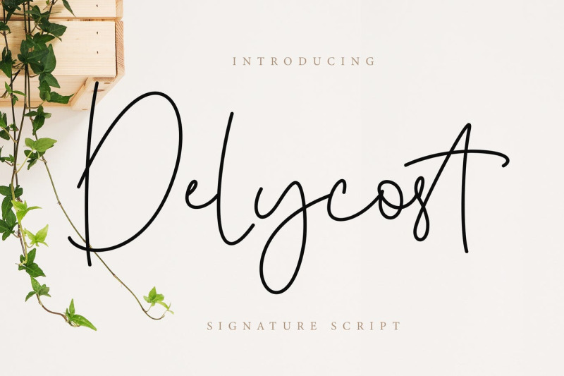 delycost-signature-style