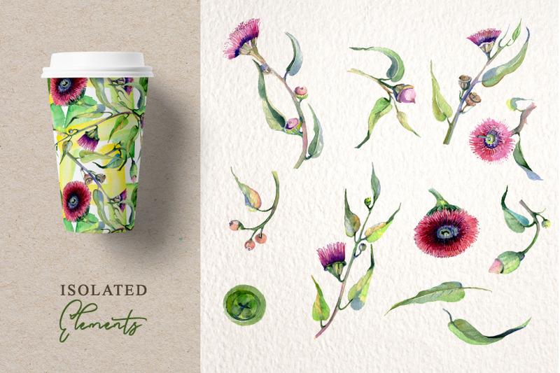 eucalyptus-flowers-watercolor-png
