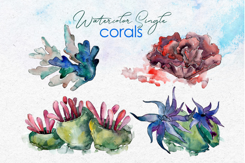 seafood-corals-watercolor-png