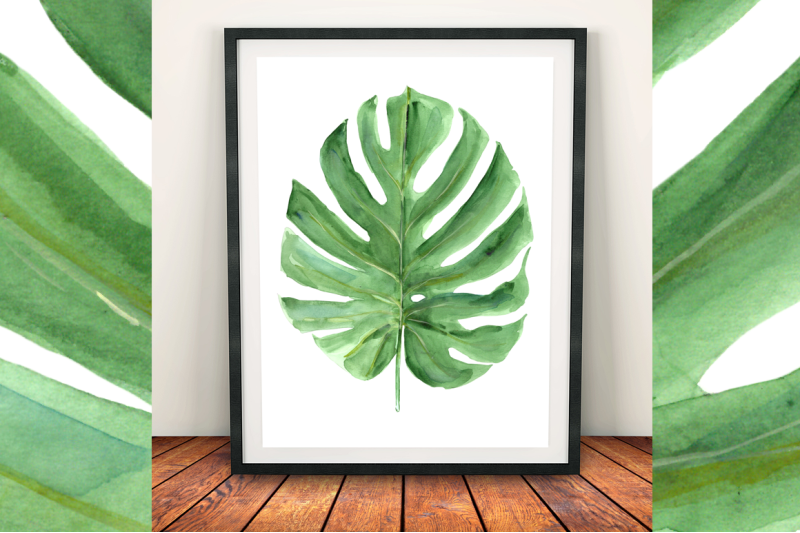 watercolor-monstera-leaf-clip-art-and-print